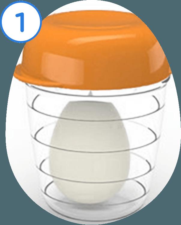 1. Insert Egg