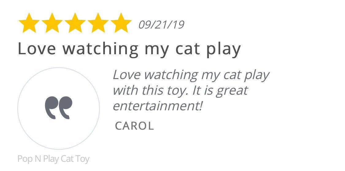 testimonial love watching my cat play