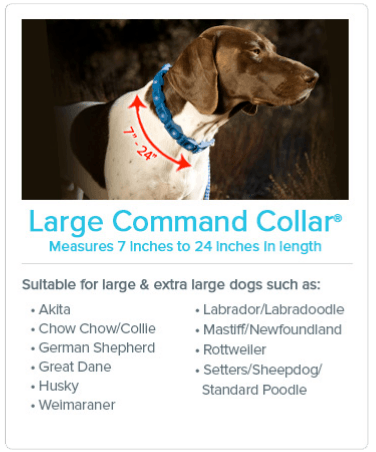 Large Command Collar® Measures 7 inches to 24 inches in length. Suitable for large and extra large dogs such as: Akita; Chow Chow/Collie; German Shephard; Great Dane; Husky; Welmaraner; Labrador/Labradoodle; Mastiff/Newfoundland; Rottweiler; Setters/Sheepdog/Standard Poodle