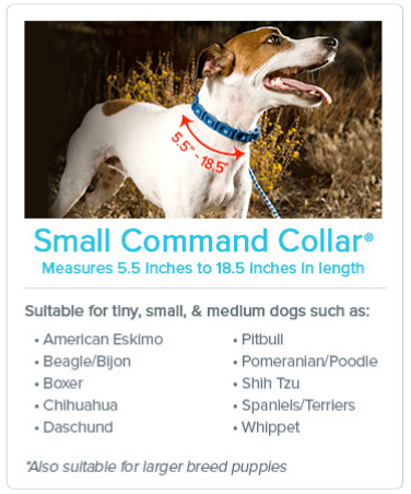 Small Command Collar